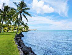 Vegan in Tahiti | Blooming Vegan
